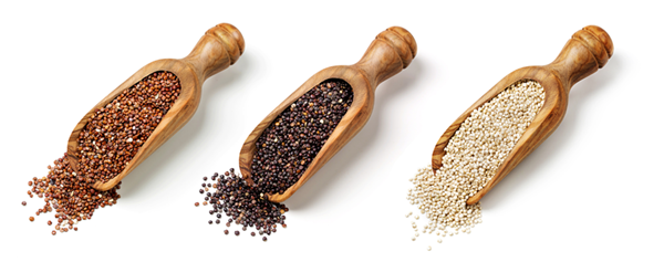 Red-black-and-white-quinoa-seeds-isolated-on-a-white-background_shutterstock_288608240-(1).png